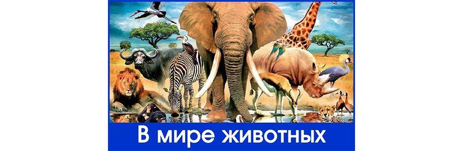 """VIII Международный творческий конкурс """"В мире животных"""" Cover Image"""